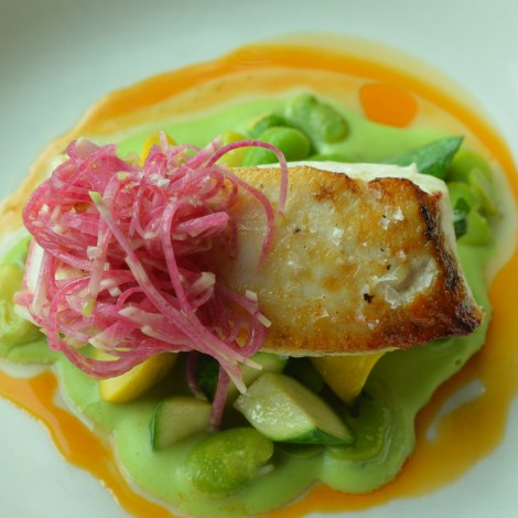 Halibut with Fava Bean Pureé and Watermelon Radish